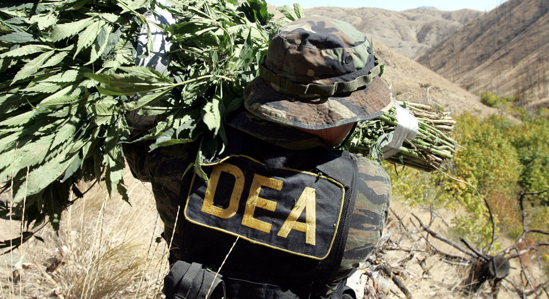 The Downside to the DEA Rescheduling Cannabis