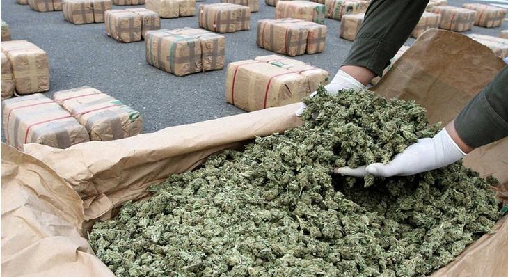 Research Paper Intro  Th Grade  Youtube Reasons Why Marijuana  Marijuana Legalization Essays Thejudgereport Web Fc Com Reasons Why Marijuana  Should Be Legal Mannyrutinel Com