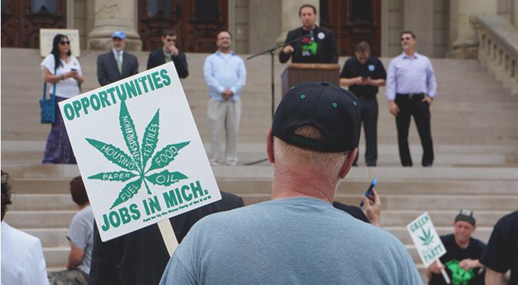 Michigan's Marijuana Initiative Foiled for 2016