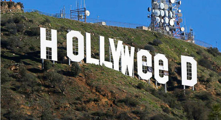 Artist Arrested and Charged For Changing Hollywood Sign to Read 'Hollyweed'
