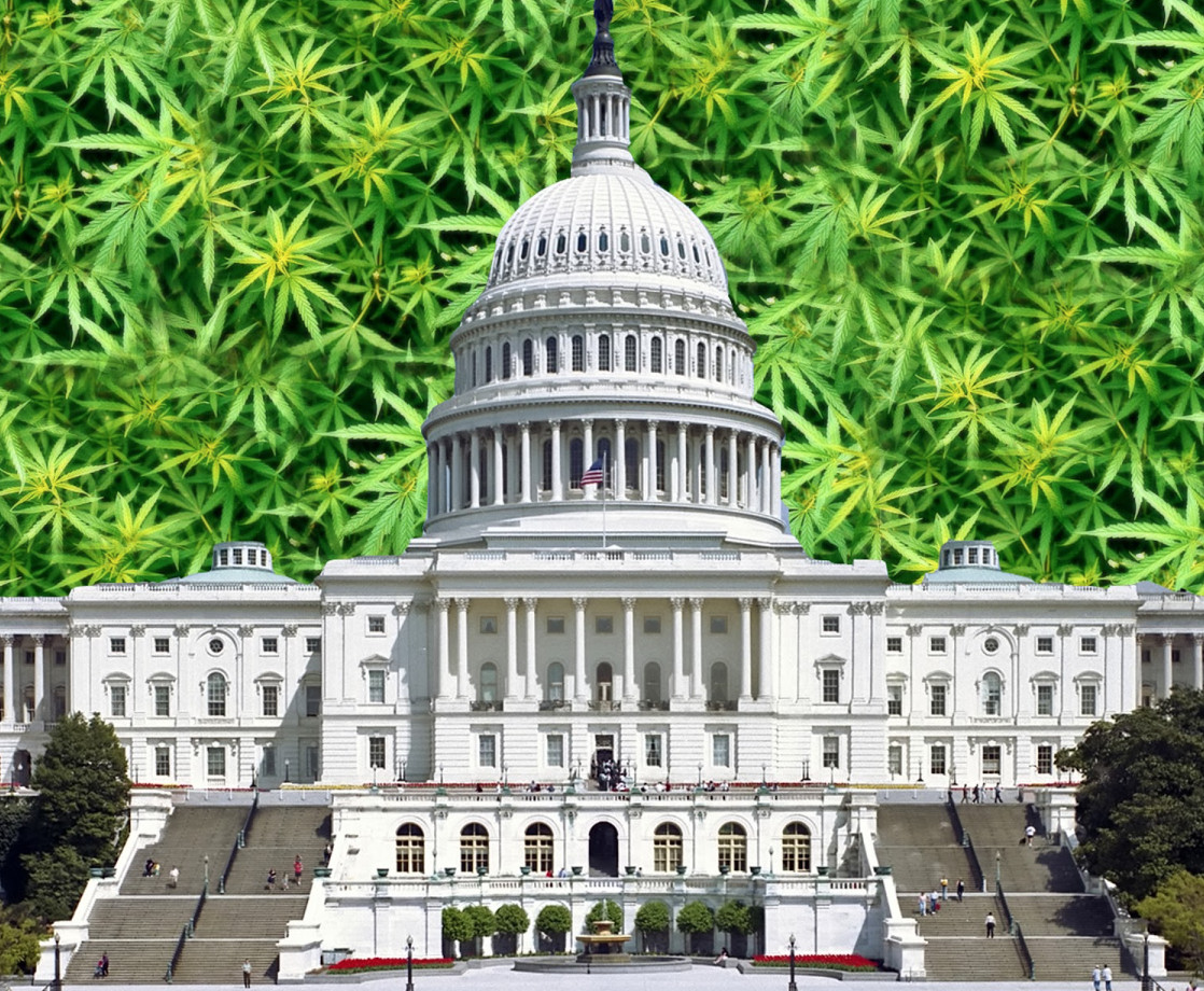 https://merryjane.com/news/trump-administration-may-inspire-congress-to-legalize-marijuana