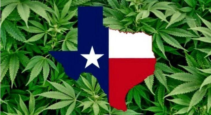 Texas Doctors Could Lose Their Licenses For Prescribing Medical Marijuana to Patients
