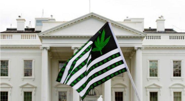 Congressional Cannabis Caucus Responds Swiftly to Spicer's Denouncement of Recreational Marijuana