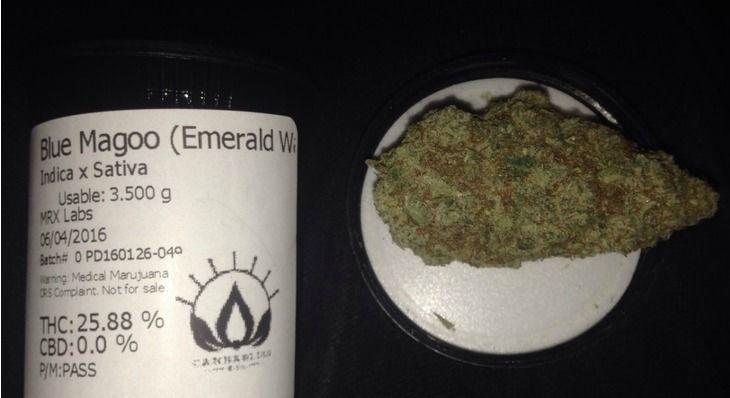 OLCC recalls marijuana sold in Mapleton shop