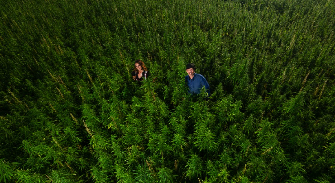 Marihuana Schweiz
