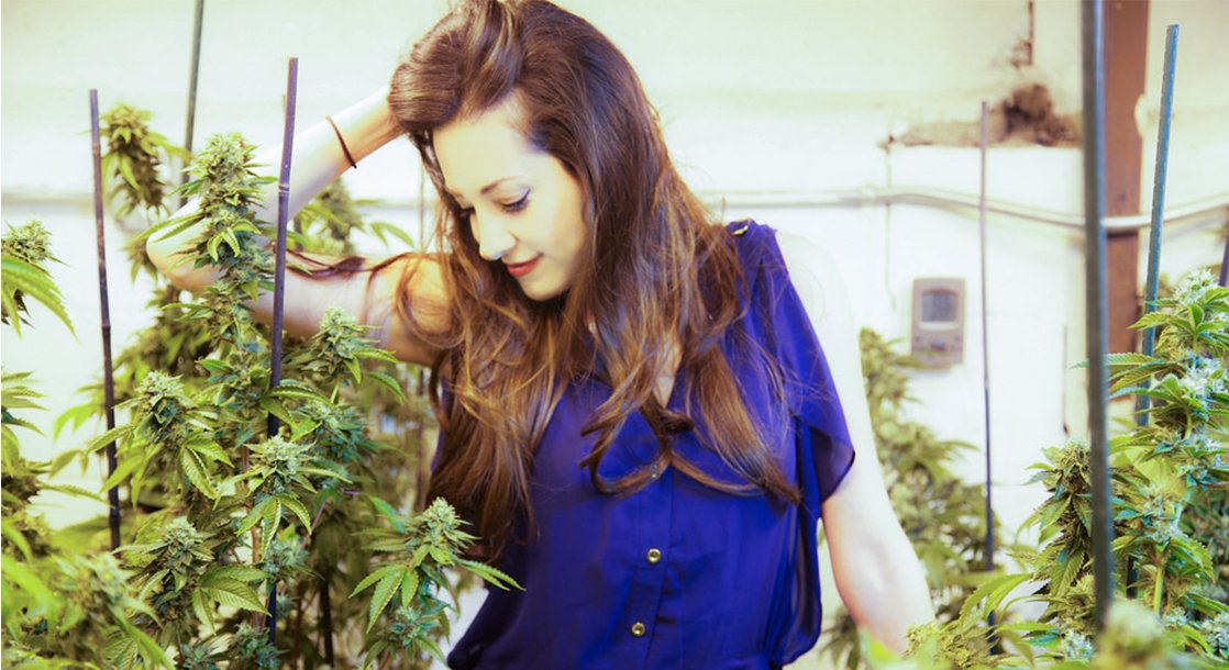 "Catching Up with Dr. Dina, the Inspiration for Nancy Botwin on ""Weeds"""