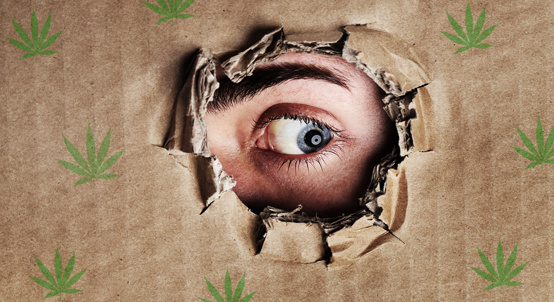 Paranoid Pot: 8 Weed Strains Rumored to Make You Lose Your Mind
