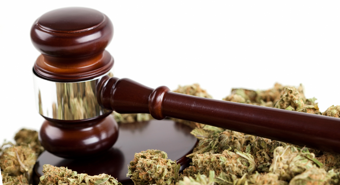 "Lawyer Up: What Is ""Limited Immunity"" and How Could It Hurt California Cannabis Businesses?"