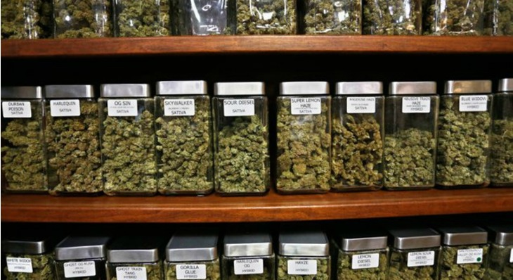 Nevada Judge Rules to License New Legal Weed Distributors