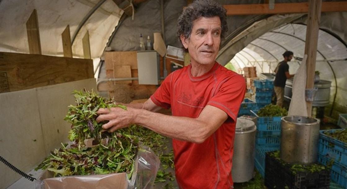 Massachusetts Farmers Lobby for Access to Recreational Cannabis Cultivation
