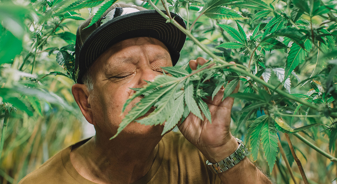 """Pot Icon Cheech Marin Opens Up About His """"Private Stash"""""""
