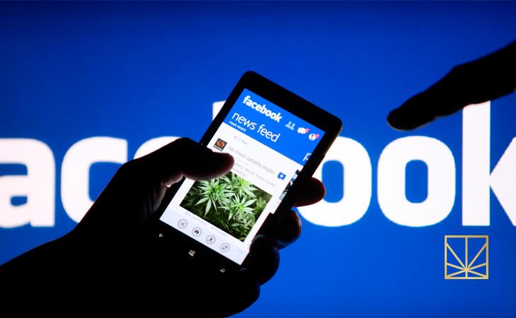 Facebook Shuts Down Legal Cannabis Pages