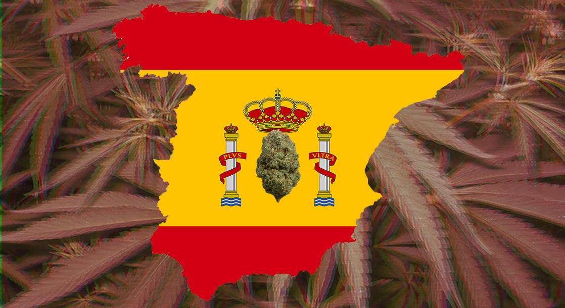 """New Amsterdam"" No More? Spain's Cannabis Clubs Fight to Stay Open"