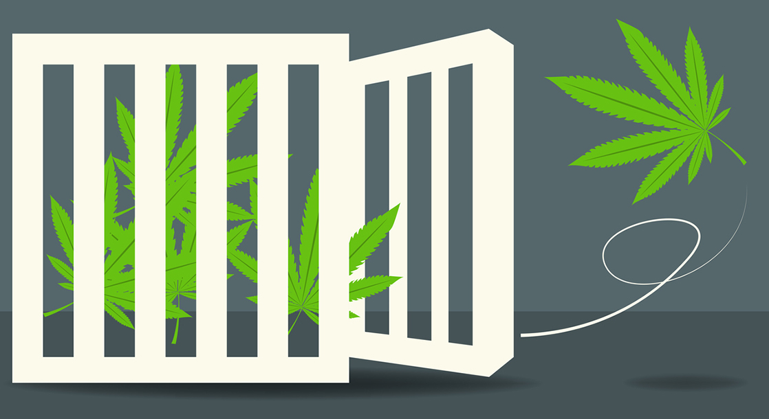 1f3b847e33 Hustle   Grow  How Former Convicts Can Get a Second Chance in Legal Weed
