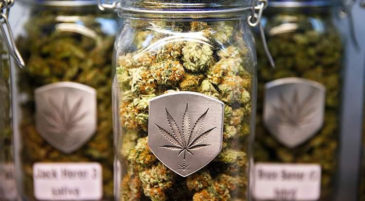 Colorado Will Use Marijuana Taxes to Combat Bullying
