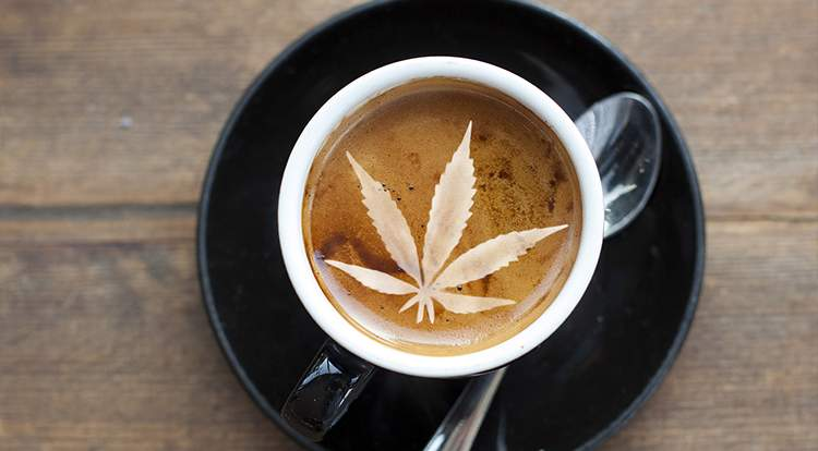 We Take an In-Depth Look at the Close Relationship Between Coffee and Cannabis