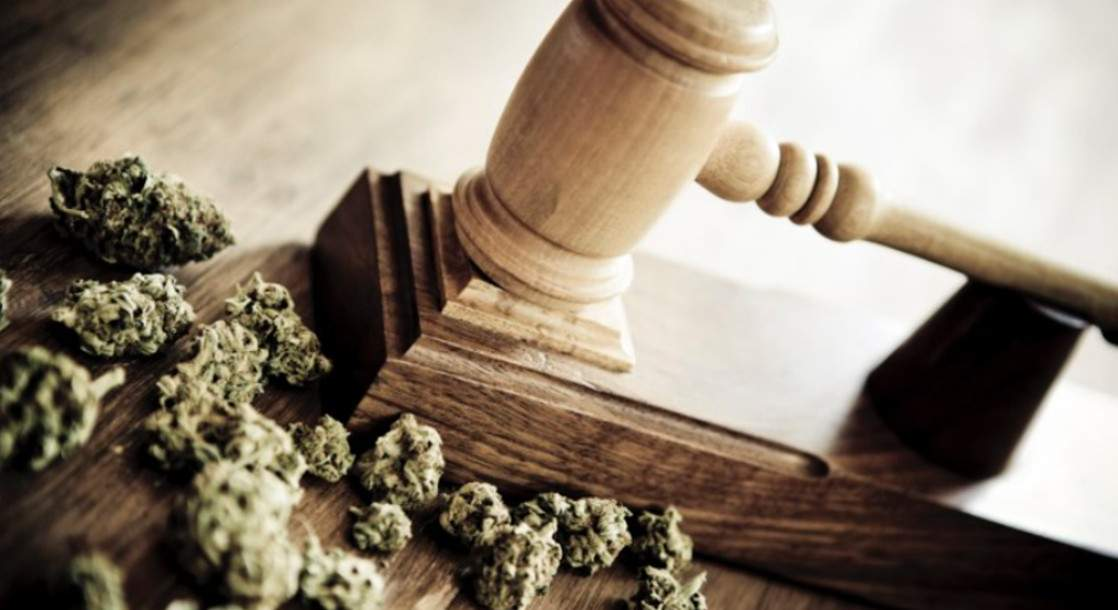 Massachusetts Couple File Lawsuit Against State Police for Return of Seized Cannabis Plants