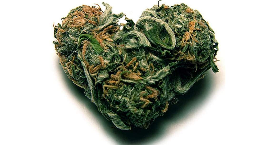 Can Marijuana Really Lead to a Broken Heart?