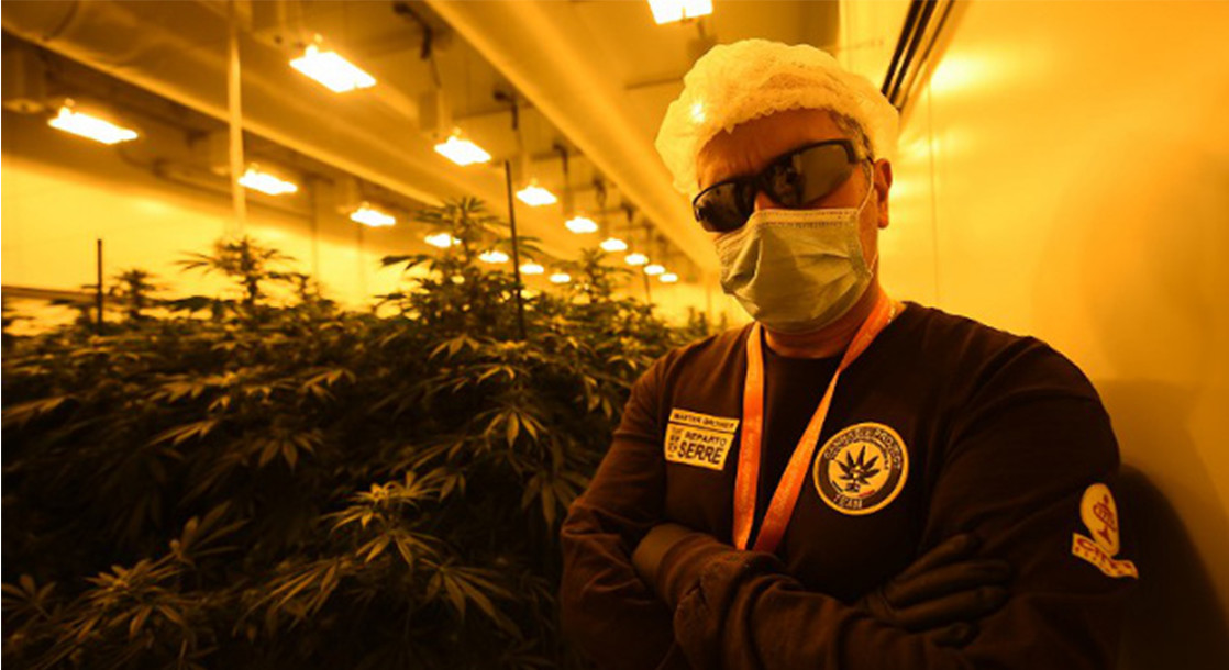 Italy's Medical Cannabis Is Grown In A Cultivation and Research Facility Run By Military Police