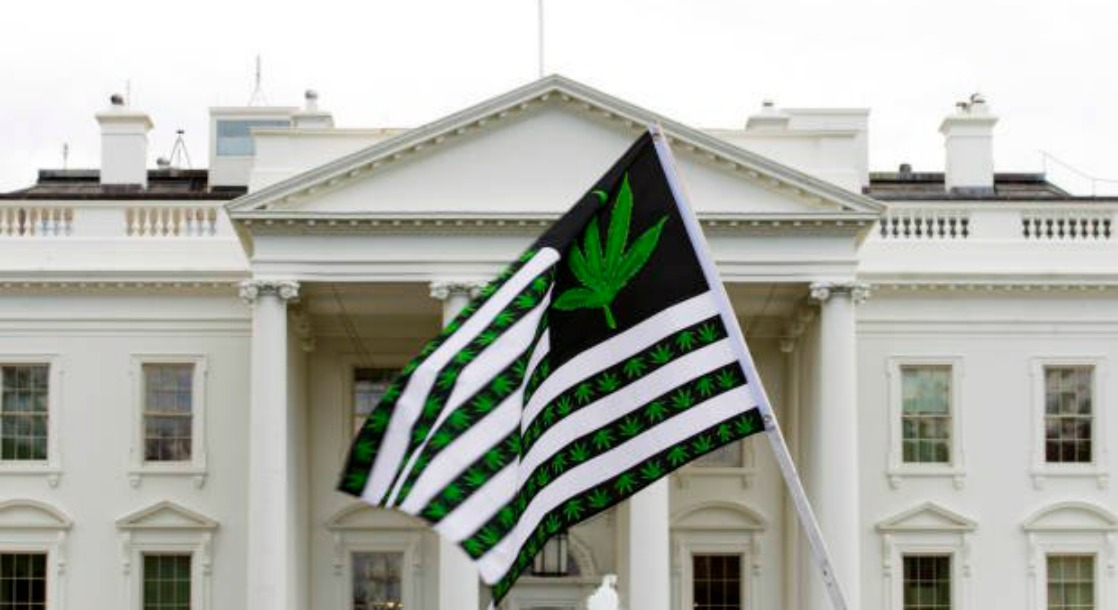 Congressional Cannabis Caucus Responds Swiftly to Spicer's Denouncement of Recreational Marijuana