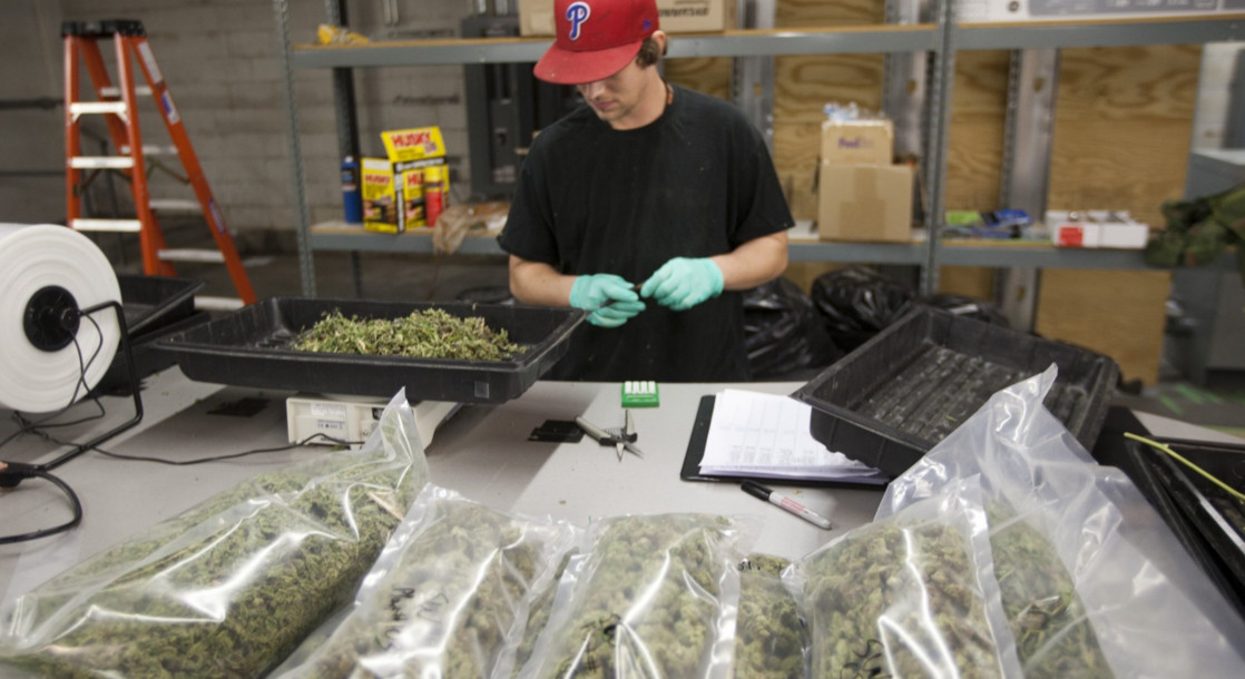 New Jersey Medical Marijuana Program Added 76% More Patients in 2016
