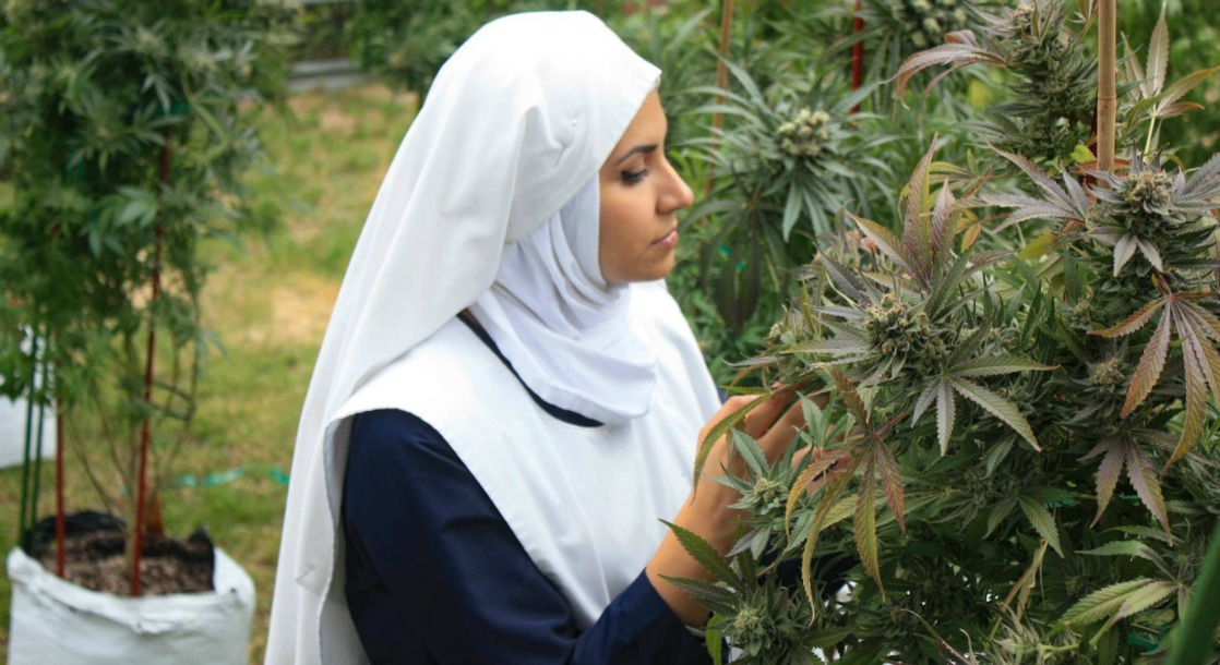 "California's Central Valley ""Weed Nuns"" Grow Cannabis to Help Women Build Independent Lives"