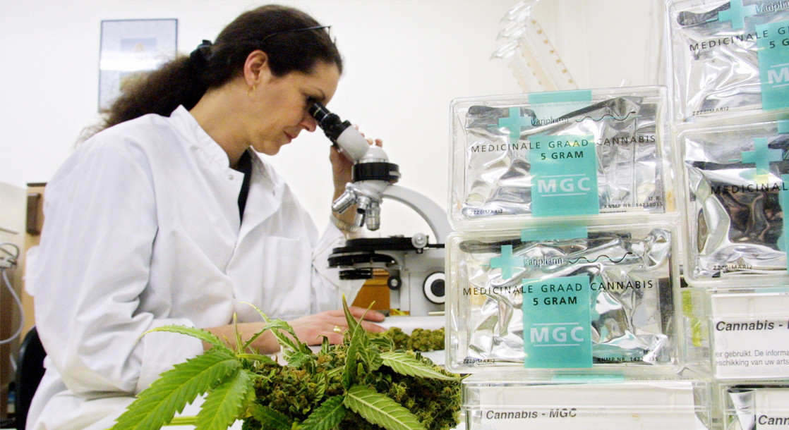 """The Unknown Science Behind the """"Entourage Effect"""" of Chemicals in Marijuana"""