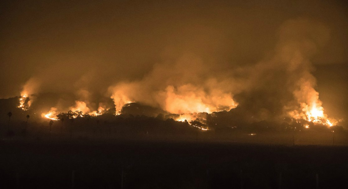 Northern California Wildfires Are Devastating the Area's Cannabis Crop