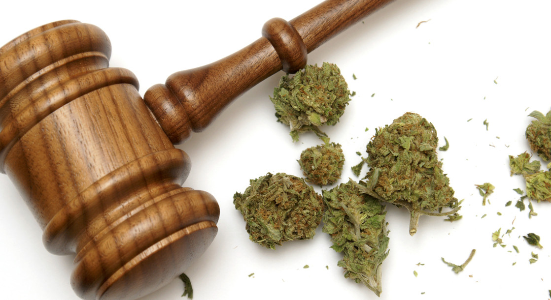 Jeff Sessions Hates Weed But Cannabis Lawyers Are Ready to Fight Back