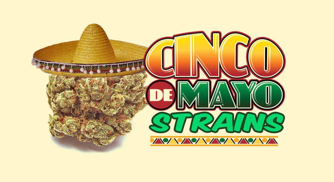 5 Weed Strains to Smoke on Cinco de Mayo