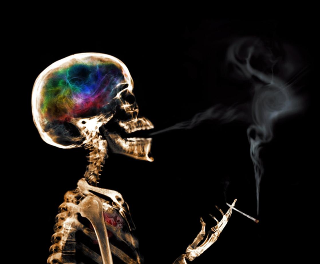 Main smoking premature death study  square