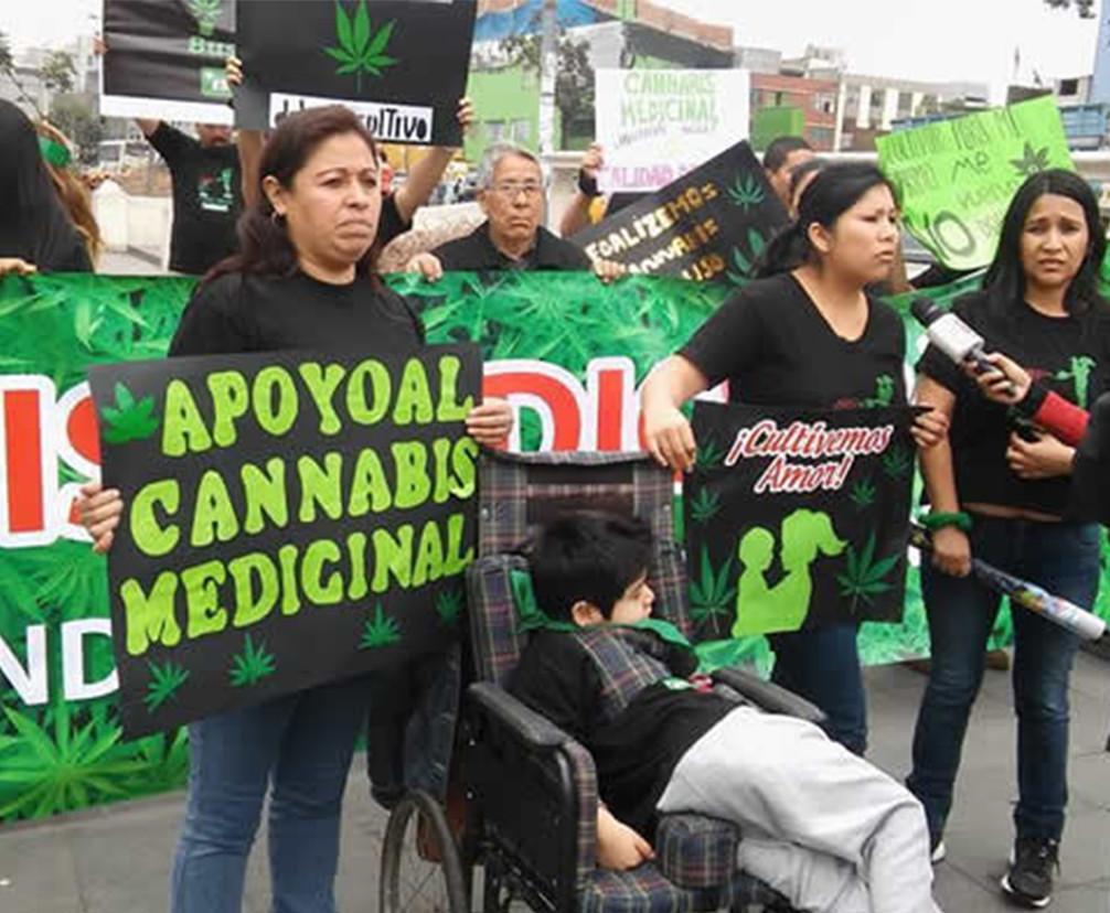 Main peru medical marijuana square