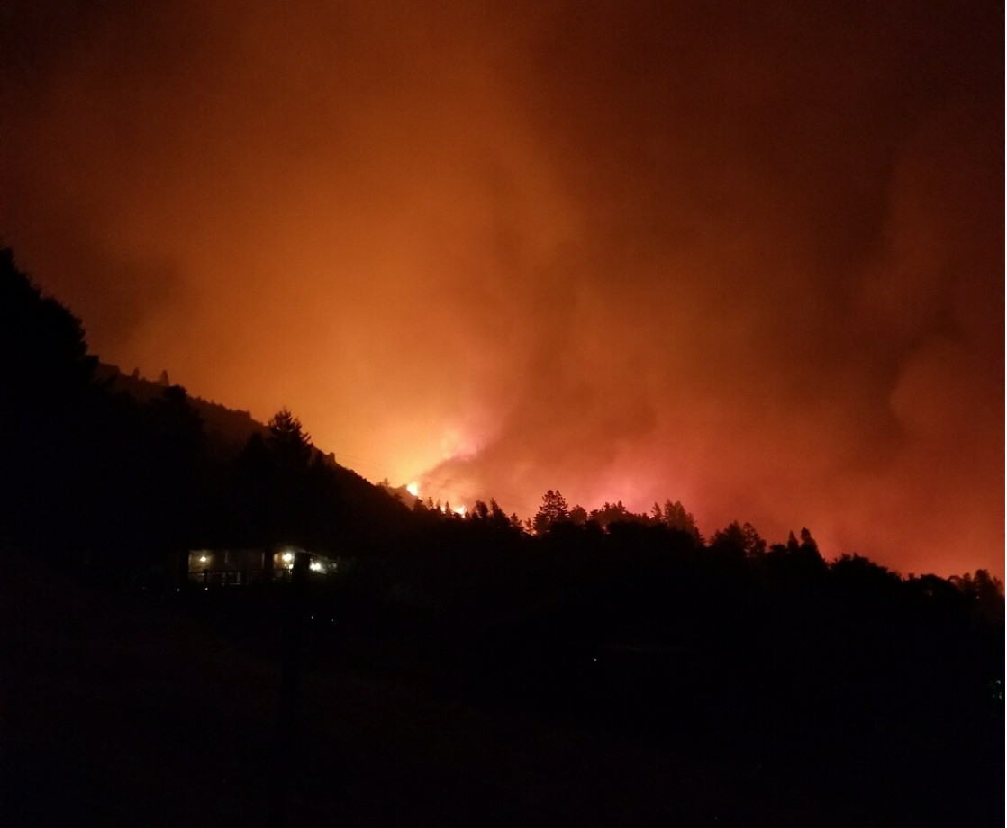 Main cal wildfires green rush feature square