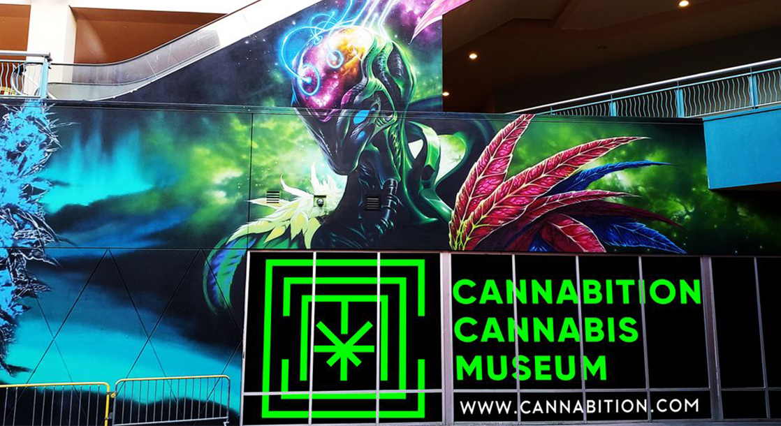 Las Vegas New Weed Museum Has A Bud Filled Swimming Pool