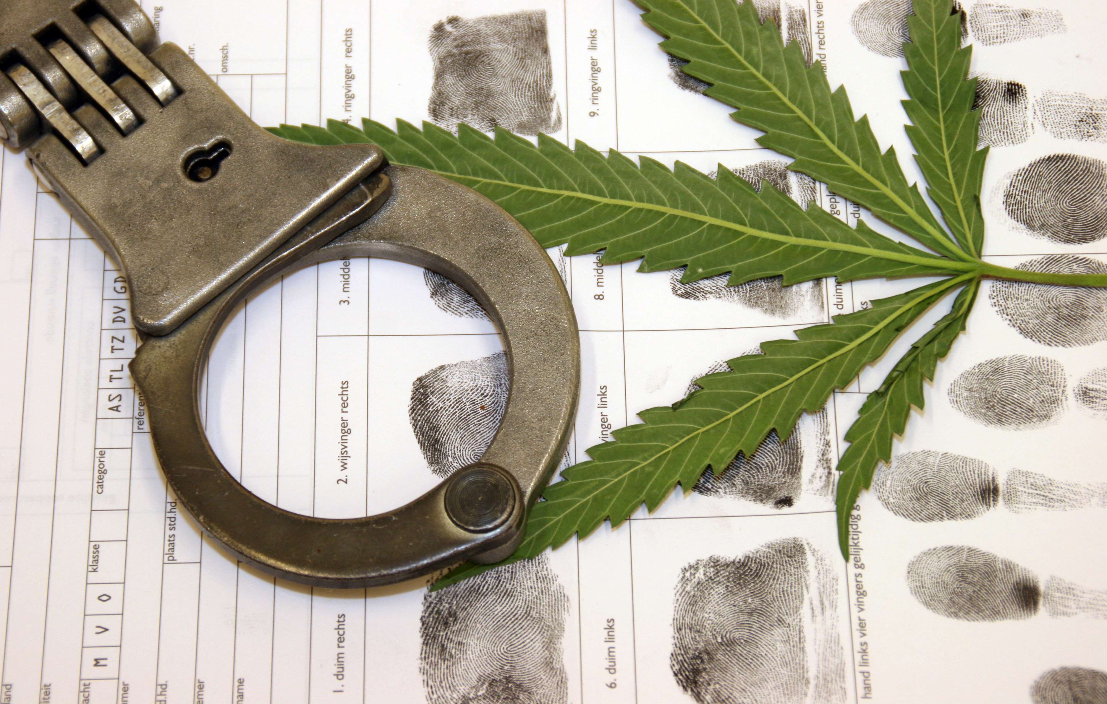 How to Get Cannabis Crimes Expunged From Your Record in California