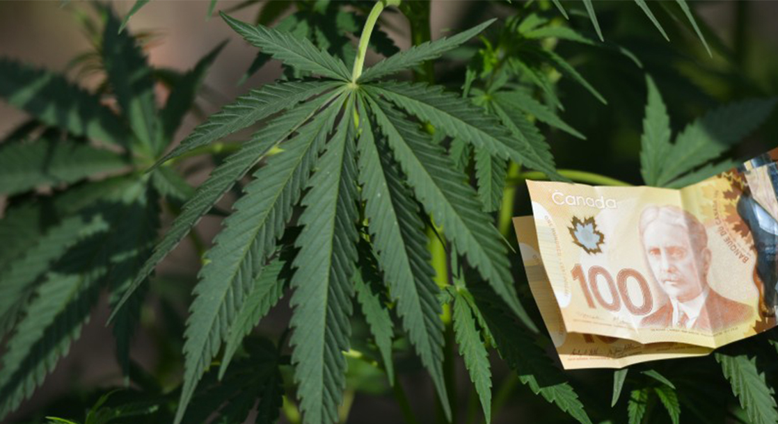 """From """"YOLO"""" to """"POT"""": Weed Company Snags Coveted Stock Ticker Symbol"""