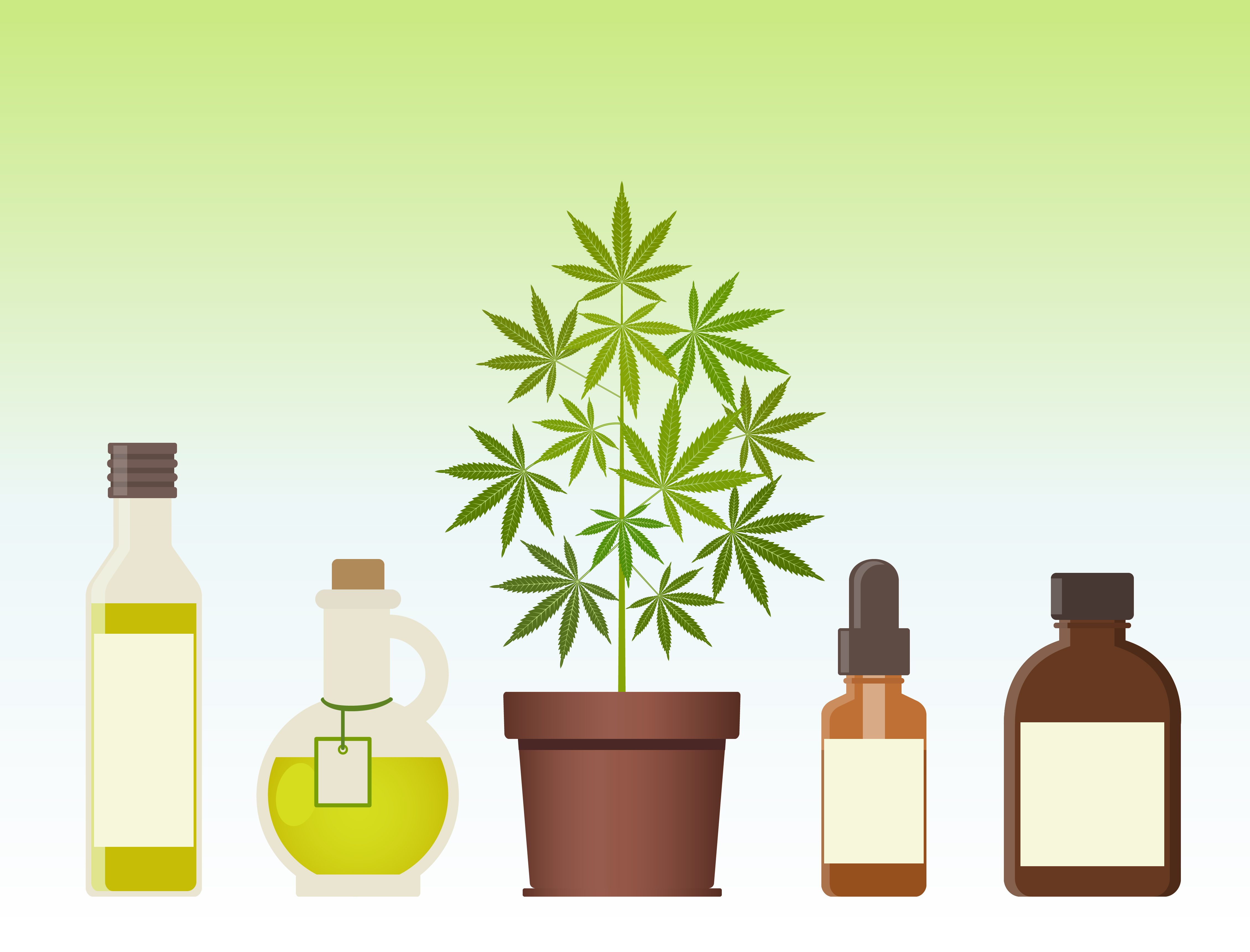How Long Does It Take for CBD to Wear Off?