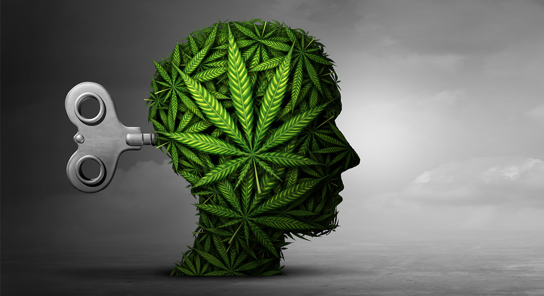 For the First Time, Scientists Looked at Brains on THC and CBD