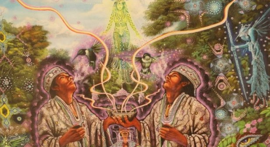 """How the """"Ayahuasca Diet"""" Can Maximize Your Psychedelic Experience"""