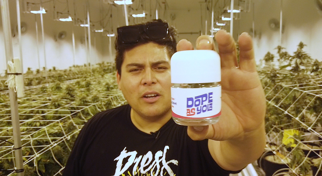 Dope as Yola: From Slanging Packs to Launching the Dopest New Weed Brand
