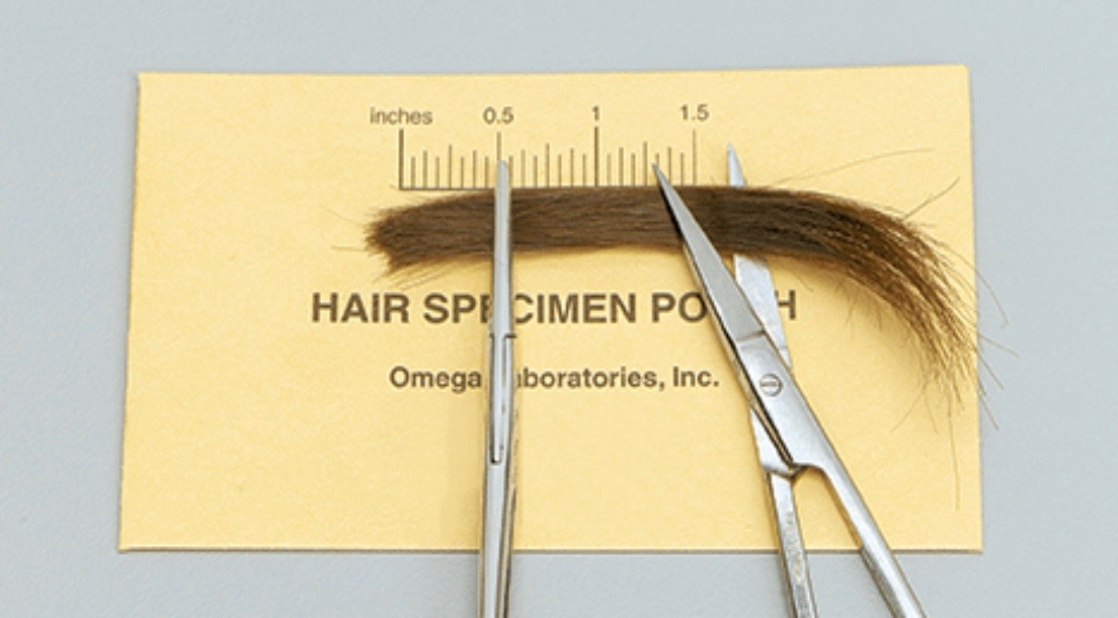 Wash Away Your Fear of a Hair Follicle Drug Test