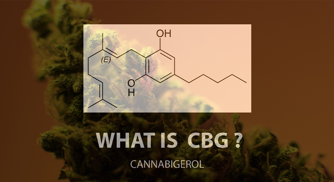 What Is CBG and What Are The Benefits of This Cannabinoid?
