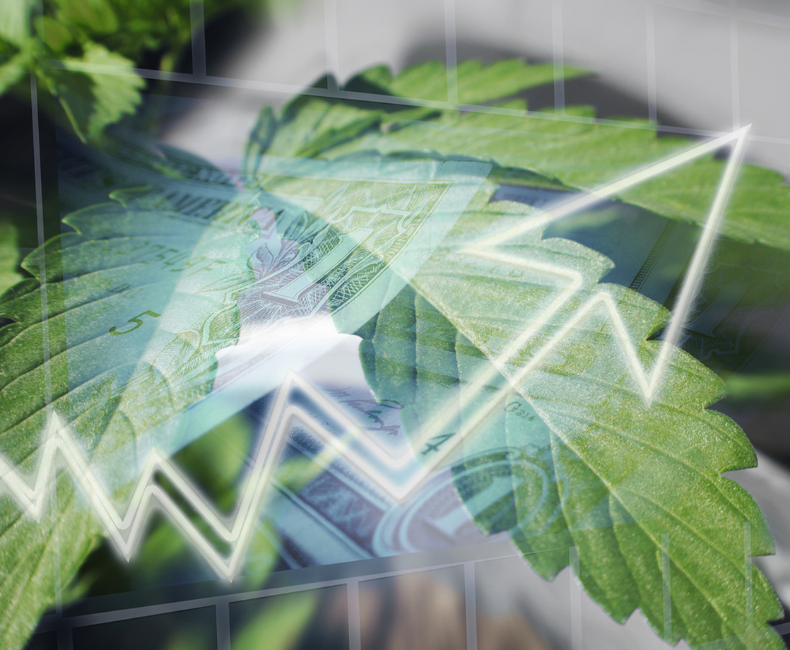 Is the Cannabis Industry Seeing Its First Market Crash?