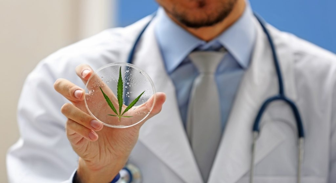 """The Feds Just Approved a """"Groundbreaking"""" Medical Marijuana Study at Yale"""