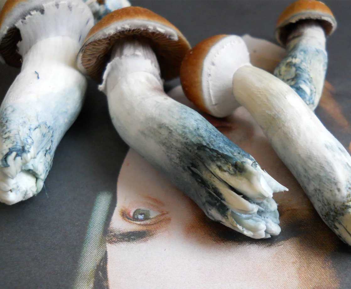 Scientists Finally Figured Out Why Magic Mushrooms Turn Blue