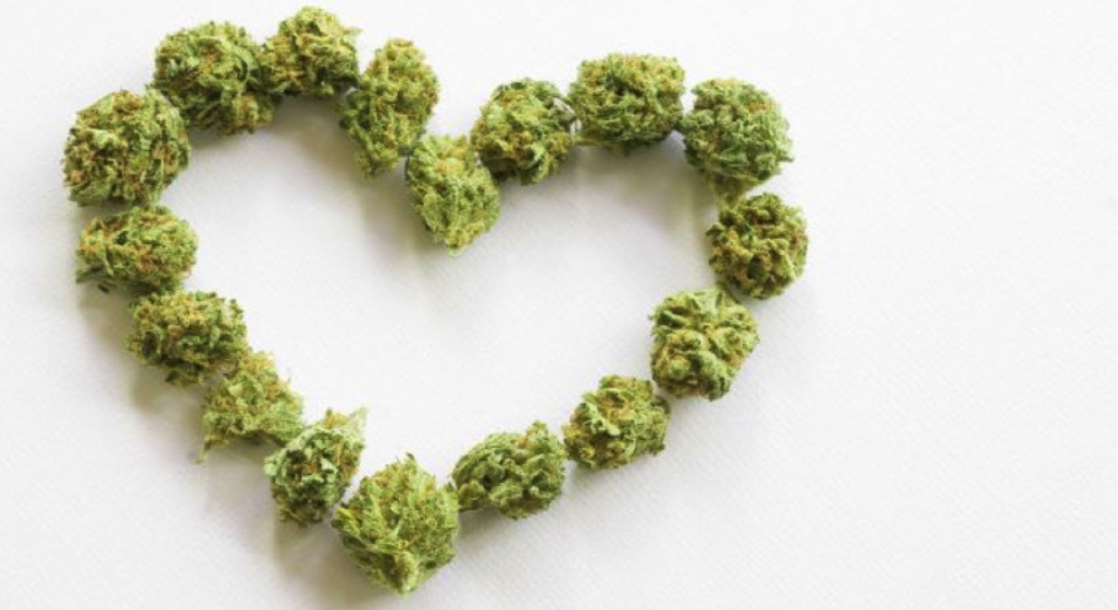 Regular Cannabis Use Linked to Changes in Heart Structure, Study Finds