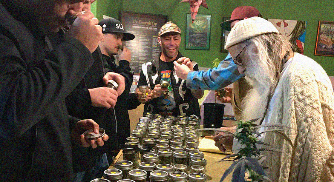 Judging the World's Best Cannabis Flower with a Volcano at the 2019 Emerald Cup