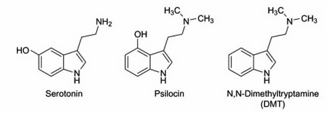 1582755386625_psilohuasca_chemical_comp.jpg