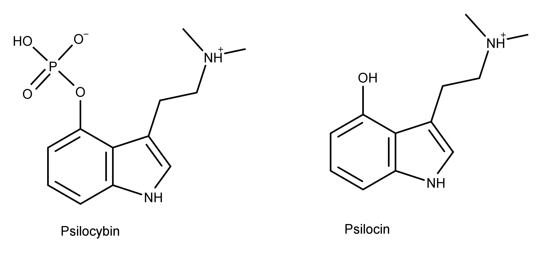 1582755825735_3000-psilocybin-and-psilocin.png