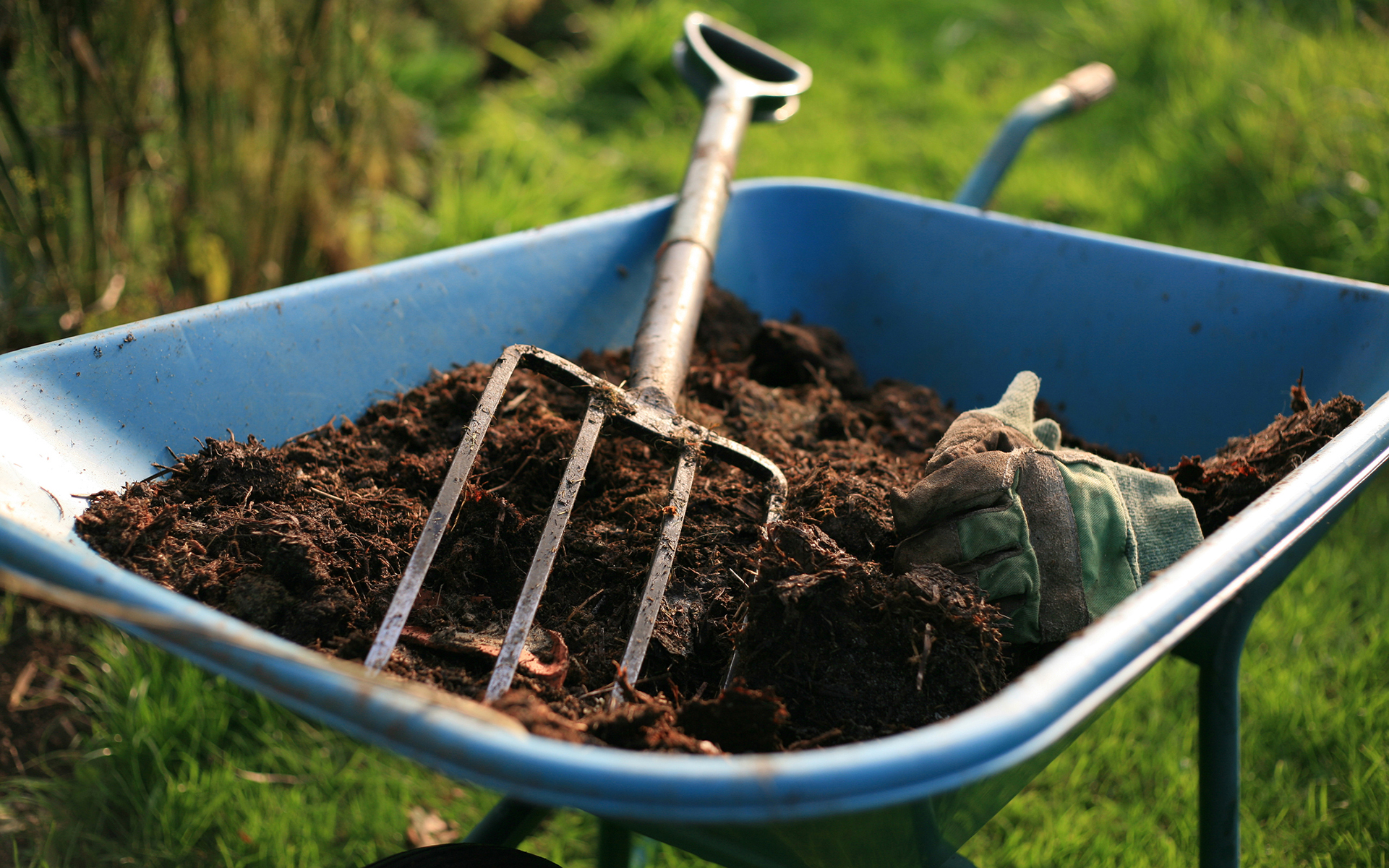 1583875478662_how-to-use-mulch-to-improve-your-cannabis-garden.jpg
